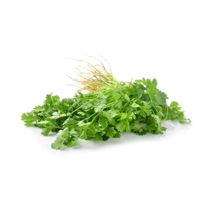 Market intelligence of Coriander in the South Africa