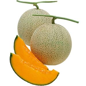 Market intelligence of Netted Melon in the Czechia