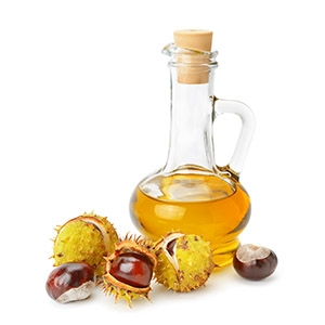 Market intelligence of Beech Nut Oil in the Turkey