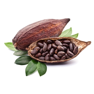 HS Code 180610 | Cocoa powder, sweetened | Kuwait