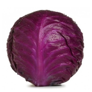 Market intelligence of Red Cabbage in the South Africa
