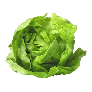 Market Intelligence of Lettucein United States