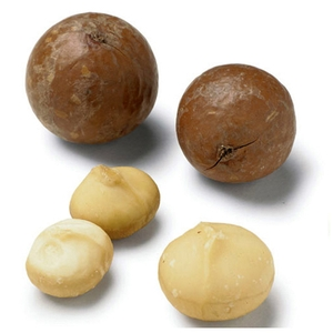 Market intelligence of Macadamia, shelled in the Tonga